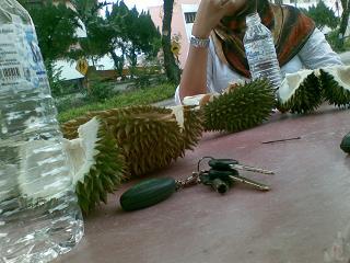 durian itu membuatkanku lupa dunia sekejap :cool: